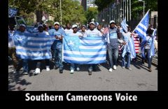 Anglophone Diaspora: From Marginalization to Recognition