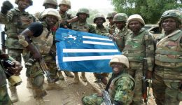 Southern Cameroons Defense Force in African Nations Cup threat: Warns it will launch attacks