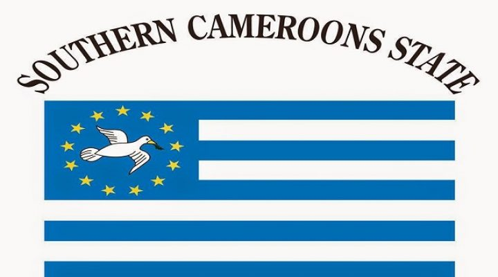 Southern Cameroons: Elect your new own Government NOW!