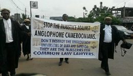 Anglophone Uprising: Leadership prohibits violence, moves co-ordination to Europe