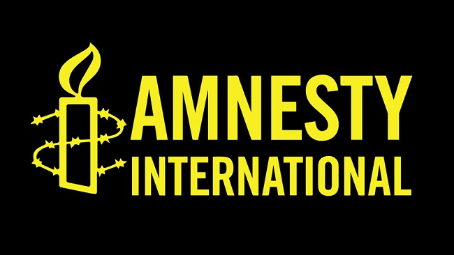 Amnesty International says US gun violence 'human rights crisis'