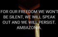 Anglophone Crisis: Resistance rather than collaboration is the only way