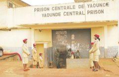 Southern Cameroons Crisis: Outbreak of meningitis at the Kondengui prison