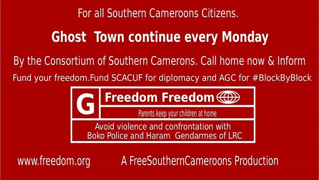 Southern Cameroon GCE Crisis: Biya regime making a mockery of education