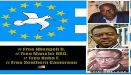 Southern Cameroon Crisis: Why we should be Ambazonia