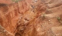 Dozens arrested including 2 Chinese in French Cameroun anti mining raids