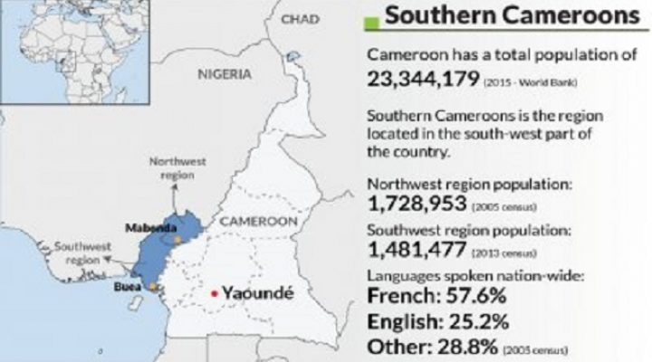 Southern Cameroons Uprising: All what you need to know