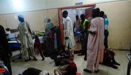 15 killed in suspected Boko Haram attack in Nigeria's Borno