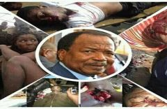 Thousands killed and tortured in Southern Cameroons under South Africa's watch