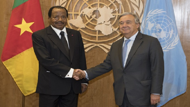 UN's  inaction on mass killings in Cameroon