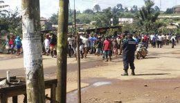 Biya regime frees 52 opposition activists