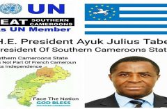 Ambazonian quest for independence: Why war remains a necessary evil
