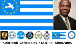 Southern Cameroons: Understanding the Ambazonia Struggle