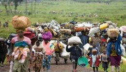 Cameroon Used to Welcome Refugees. Now It Forcibly Expels Them