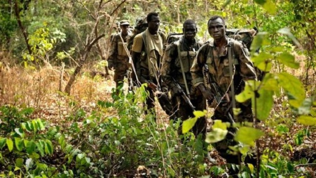 Southern Cameroons Crisis: Amba Tigers battle military in various locations in Southern Cameroons