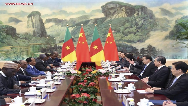 China willing to help Cameroon promote sustainable development