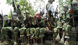 Boko Haram kidnaps 17 youths in north Cameroon: officials