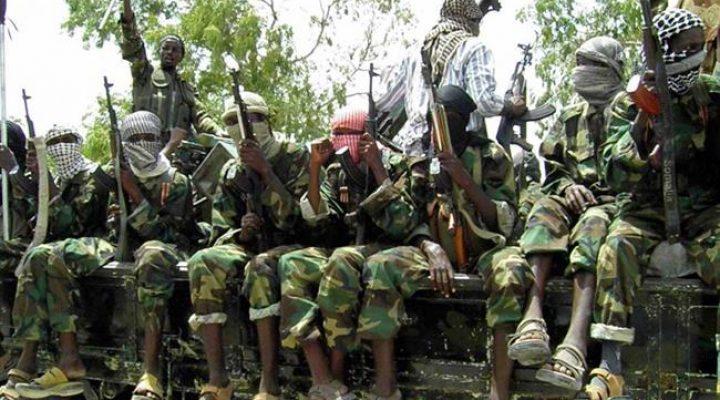50 Boko Haram fighters killed in Nigeria attack