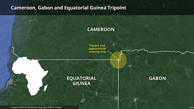 Cameroon, Equatorial Guinea reopen border after four months