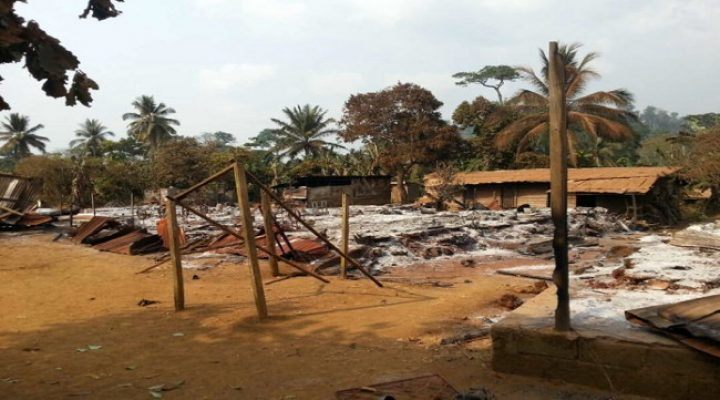 Southern Cameroons: I Cry for My Homeland