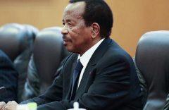 Southern Cameroons War: Why Biya is losing