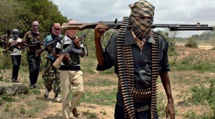 187 ex-jihadists surrender in Cameroon