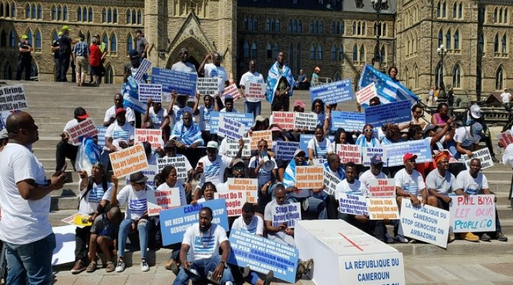 Understanding Southern Cameroons vicious war of secession