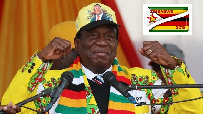 Mnangagwa wins Zimbabwe presidential polls by 50.8%
