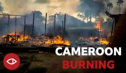 Should we worry about genocide in Southern Cameroons?