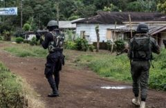 Southern Cameroons Crisis: The genocide is real