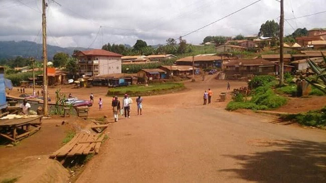 Ambazonia: Bui County reports conflict amid Interim Gov't's account of massacre