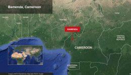 Biya regime mastering the art of muzzling opposition