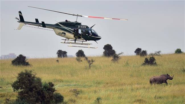 Kenya: 4 American tourists, pilot killed in chopper crash