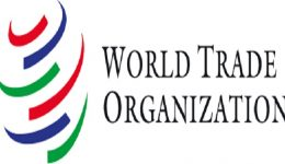 Cameroon suspended from WTO for failing to pay XAF180 million contribution