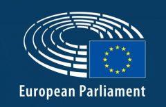 European Parliament resolution on Cameroon