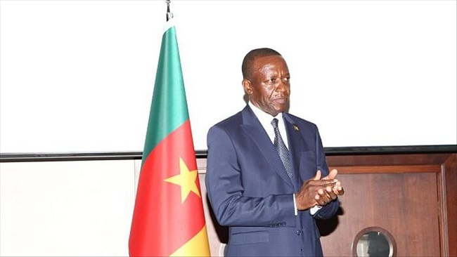 Cameroon celebrates National Day in Ankara