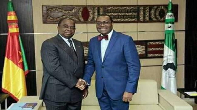 African Development Bank President Meets Cameroon Minister For Loan Arrangement