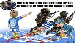 Yaounde providing protection, support to militias in Southern Cameroons