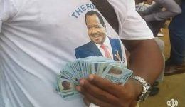 Yaounde: Claiming Massive Fraud, Opposition Challenges CPDM Landslide Victory