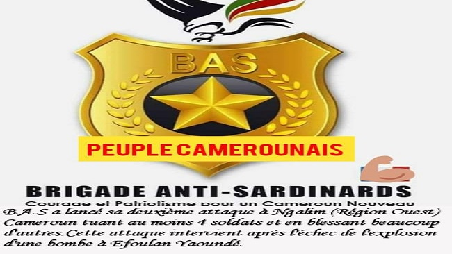 French Cameroun Crisis: 4 soldiers killed by Brigade Anti Sardinards in Galim