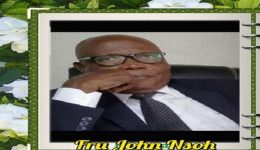 Southern Cameroons Crisis: Fru John Nsoh Must Go Home