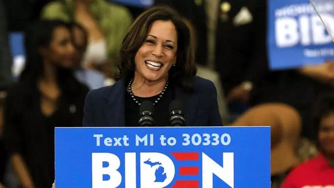 Race for the White House: Joe Biden picks Kamala Harris as running mate