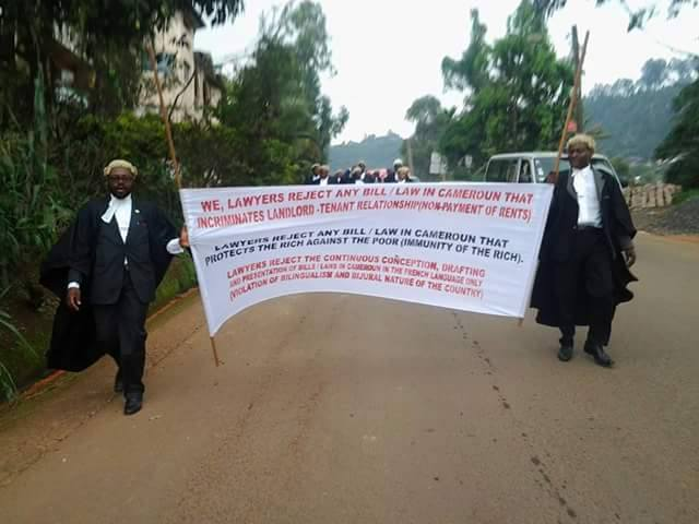 Bamenda: North West lawyers protest against modification of the Penal Code