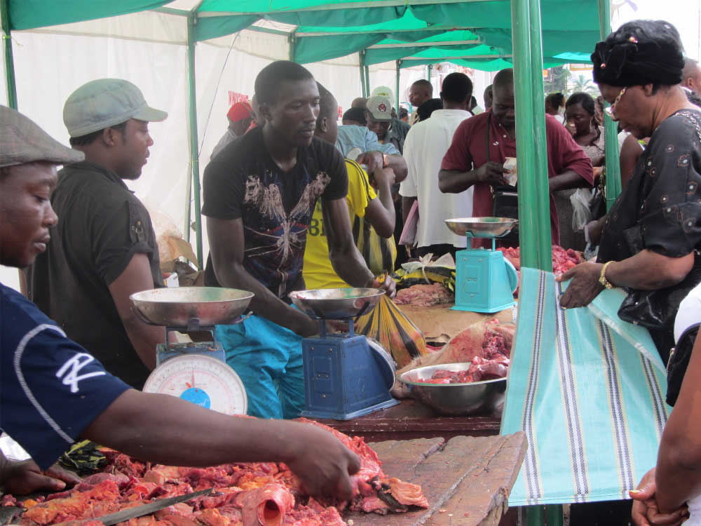Cameroon: Pig farmers improving hygienic conditions