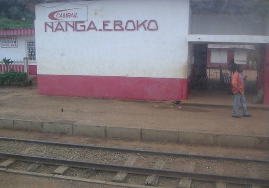 Nanga-Eboko: CPDM hunter mistakenly shoots colleague dead