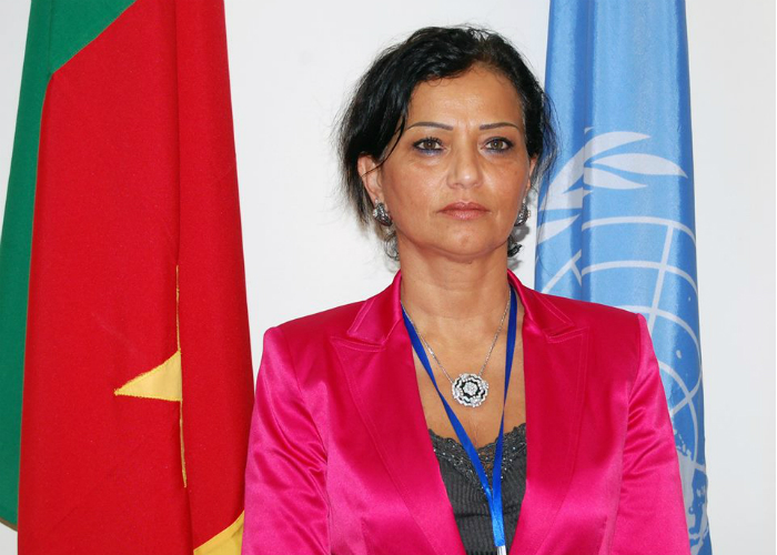 UN Coordinator says Cameroon is a fertile ground for recruitment of jihadists