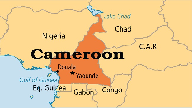 Sell Cameroon and share the money