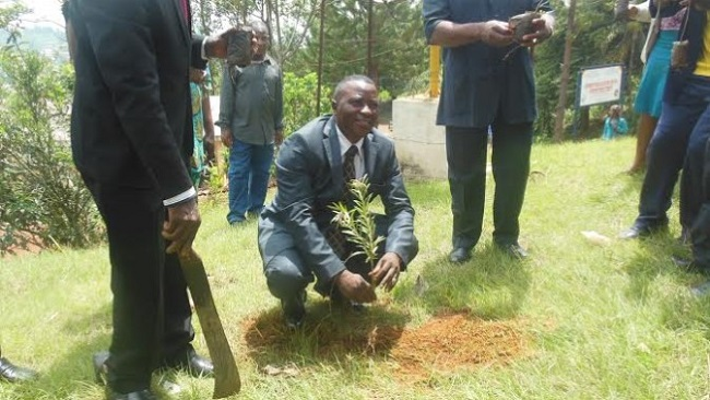 Bamenda: CPDM government ignores cry for dialysis machine, supports reforestation campaign