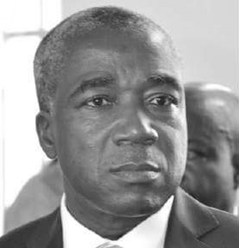 Biya's nephew appointed Vice-Governor of BEAC