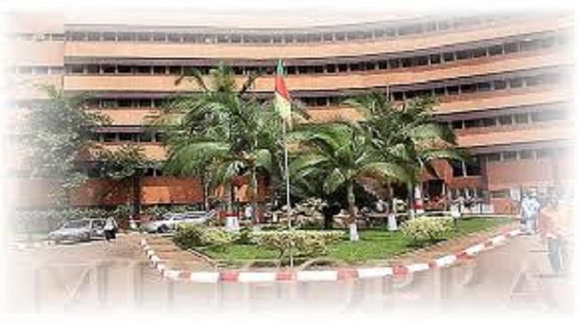 Cameroon announces massive public service recruitment